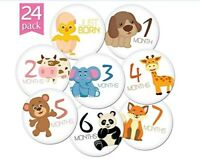"""24 PACK OF 4"""" PREMIUM BABY MONTHLY STICKERS BY KIDDOS ART. GREAT FOR PICTURES"""