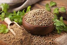 100Pcs Coriander Plant Seeds Chinese Parsley Cilantro Organic Seasoning Cooking