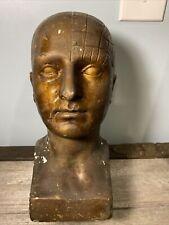 "Vintage 1900's Plaster Phrenology Scientific Psychology 11"" Bust Head"