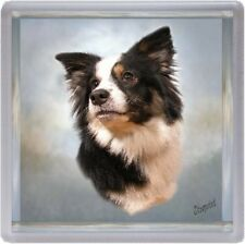 Border Collie Dog Coaster No 8 by Starprint