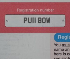 PU11 BOW CHERISHED PRIVATE NUMBER PLATE  / ARCHERY  /  PULL BOWS  /  RIBBONS