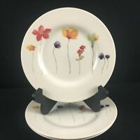 Set of 3 Salad Dessert Plates by Royal Stafford China SCATTERED FLOWERS England