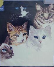 "Janlynn Counted Cross Stitch Kit CATS' EYES 9"" x 12"" -  Roger Reinardy"