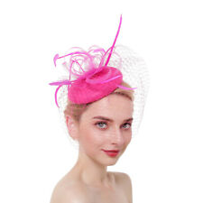 Retro Women's Veil Headdress Feather Hat Hair Clip Fascinators Beret Accessory