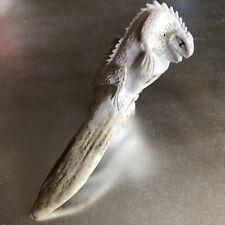 Zuni Gecko in Tree Fetish by Lewis Malie Antler 5645