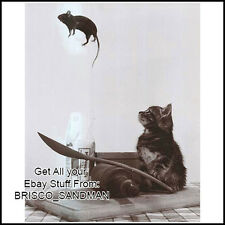 """Fridge Fun Refrigerator Magnet """"CAT AND MOUSE"""" Cat Poster Funny Photo"""