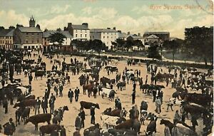 1909 Farmers Cattle Market Eyre Square Galway Ireland post card