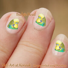 Budgie, Parakeet, Budgerigar, Nail art, Set of 24 bird Nail Art Stickers Decals
