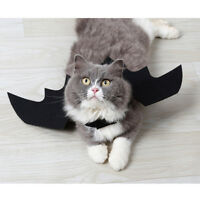 For Small Pet Dog Cat Bat Black Wings Halloween Party Costume Funny Decoration
