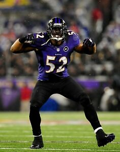 RAY LEWIS 8X10 PHOTO BALTIMORE RAVENS PICTURE NFL