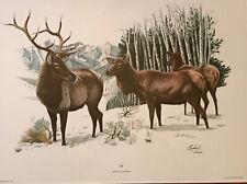 8 Richard Timms Lithograph North American Mammals Series