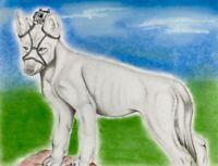 ORIGINAL INMATE PRISON ART DRAWING K-9 DOG CANINE POLICE DOG BODY CAMERA 11x8.5
