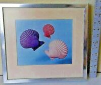 VINTAGE PAIR OF PROFESSIONAL ART PHOTOGRAPHS OF SHELLS