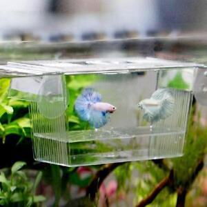 Hatching Box Fish Fry Seperator Incubator Aquarium Nano Tank Accessories YO