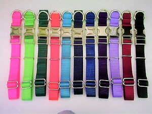 """METAL BUCKLES ,1"""" WIDE  Personalized Custom Embroidered ,,Adjustable Dog Collars"""