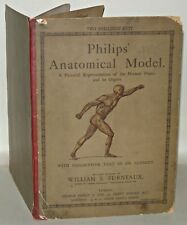 Philips Anatomical Model - Text By Dr. Schmidt, William S. Furneaux, c1920+