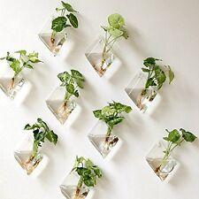 Mkono 2 Packs Wall Hanging Plant Terrarium Glass Planter, Diamond