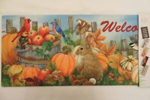 """Welcome"" Pumpkins Rabbits Bird Apple Sassafras Rug Insert Switch Door Mat 10x22"