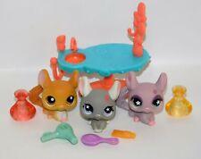 Lot of 3 Littlest Pet Shop Chinchilla Figures #340, 495 & 630 w/LPS Accessories