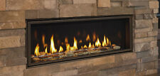 "Majestic Echelon II 48"" Direct Vent Linear Fireplace Complete Package Deal"