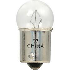 License Light Bulb-Spider Sylvania 97.TP
