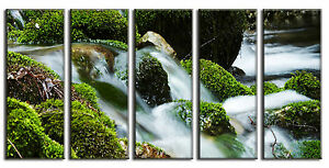 Stream in Forest Canvas Print Wall Art for Home and Office Framed Ready to Hang
