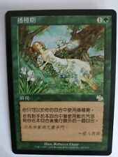 MTG 4X CHINESE JUDGMENT SEEDTIME NM/M RARE INSTANT GREEN MAGIC THE GATHERING