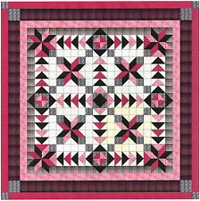 Easy Quilt Kit/Nova/Pinks/Black/Gray/Pre-cut Fabrics Ready To Sew/Beautiful!!