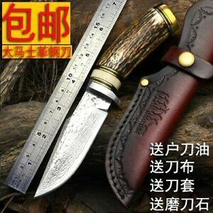 Handmade Hunting Knife Survival Combat Fixed Blade Damascus Steel Antler Handle