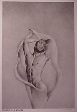 Jon Reich Art Gallery  Rapture  print of original pencil  B&W  Male  nude