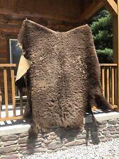 Large Buffalo Bison Rug Hide