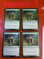 4x Oakhame Adversary | Throne of Eldraine | MTG Magic The Gathering Cards