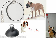 """Pet Dog Cat Grooming BATHING Bath SUCTION CUP & 36"""" Noose/Loop Cable RESTRAINT"""