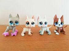 LITTLEST PETSHOP LPS lot de 4 chiens Dog Argentin #184 #1647 #1688 #588 lot5