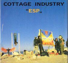 "33 Cottage Industry – ""Esp"" (ITA 1992 A.V. Arts – AVDMX 001) Single 12"""
