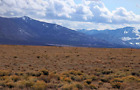 Land For Sale | 6 Acres in Colorado with DOMESTIC WELL ALLOWANCE! Owner Financed