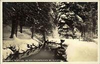 Oberharz im Winter AK  ~1930/40 Waldpartie an den Pfauenteichen bei Clausthal