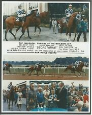 "1973 - SECRETARIAT & RIVA RIDGE - 6 Photo Marlboro Cup Composite - 8"" x 10"""