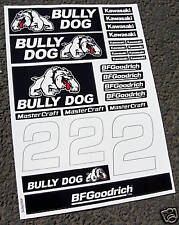 RC CORR Autocollants Stickers associés bullydog SC10 slash