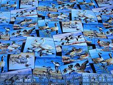 3 Yards Quilt Cotton Fabric - Elizabeth's Studio Waterfowl Scenic Patch Black