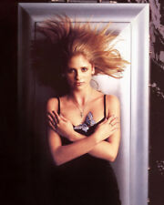 Sarah Michelle Gellar Buffy Ringer actress 1 new glossy 8x10 photo picture #126