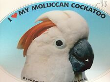 SALE! Moluccan Cockatoo Parrot Exotic Bird Vinyl Decal Bumper Sticker