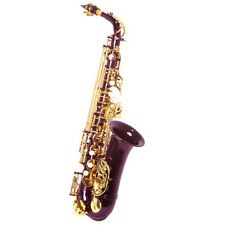 "HOLIDAY SALE! ""Sky"" Alto Saxophone w Wonderful Versatile Case LIMITED TIME"