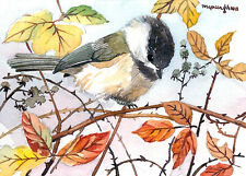 ACEO Limited Edition- Berry bush chickadee, Chickadees, Gift for bird lovers