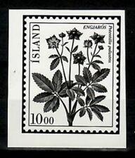 Photo Essay, Iceland Sc569 Flower, Potentilla palustris.