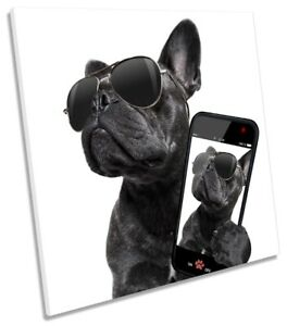 French Bulldog Selfie Print CANVAS WALL ART Square Picture Black