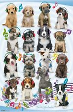 Puppy - Headphones Wall Poster - 22x34 - FREE S/H
