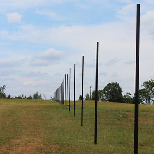 10' Deer Fence Heavy Line Posts - Galvanized PVC Coated Steel (30 Pack)