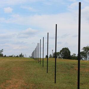 10' Deer Fence Heavy Line Posts - Galvanized PVC Coated Steel (30 Pack)