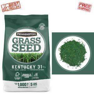 Pennington 5 lbs. Kentucky 31 Tall Fescue Penkoted Grass Seed Durable Variety